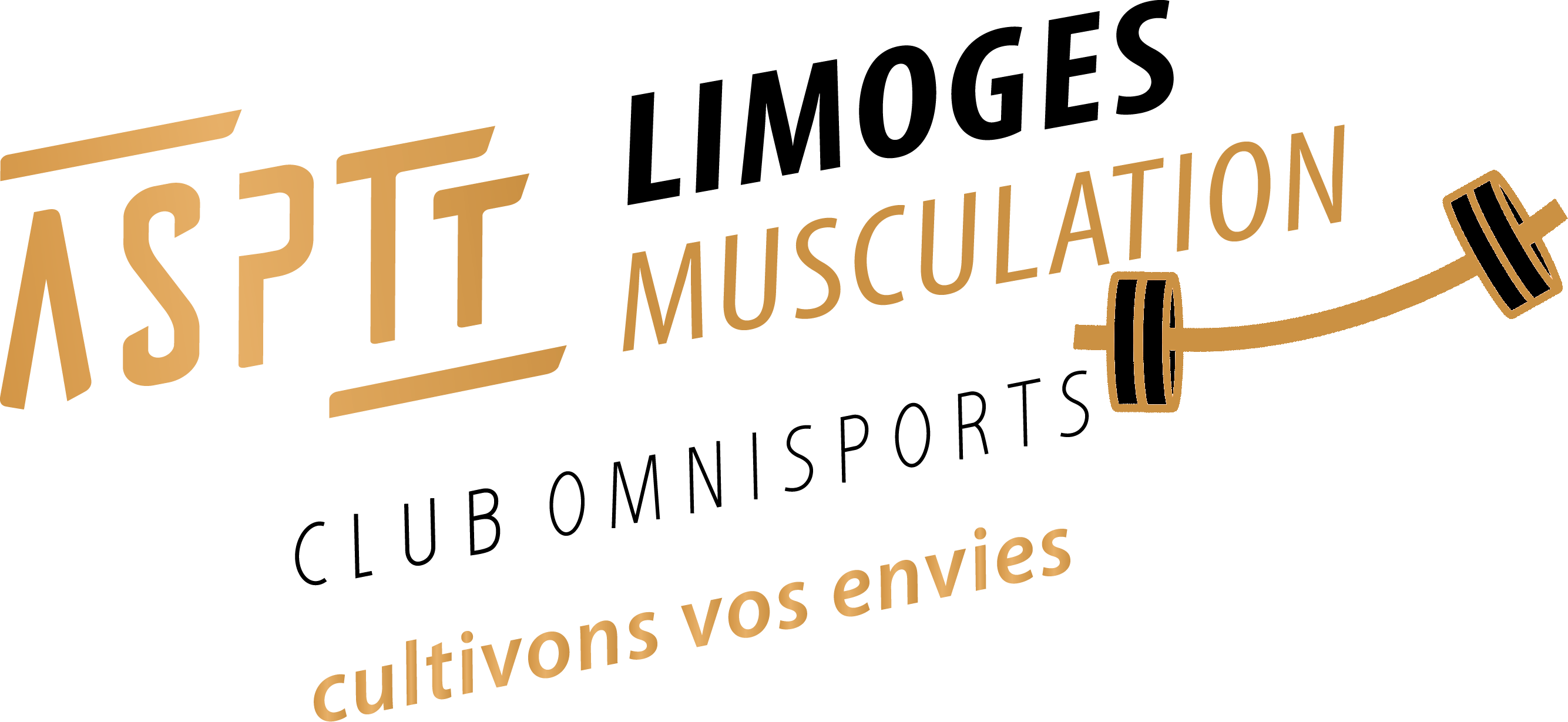Section Force Athlétique - Musculation